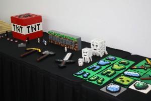 Minecraft2016 (38)